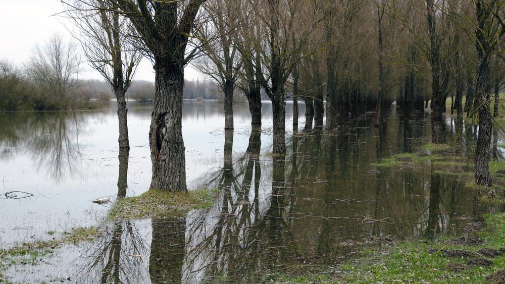 Lassan lecseng az árvíz: a Duna apad, a Tisza most tetőzik