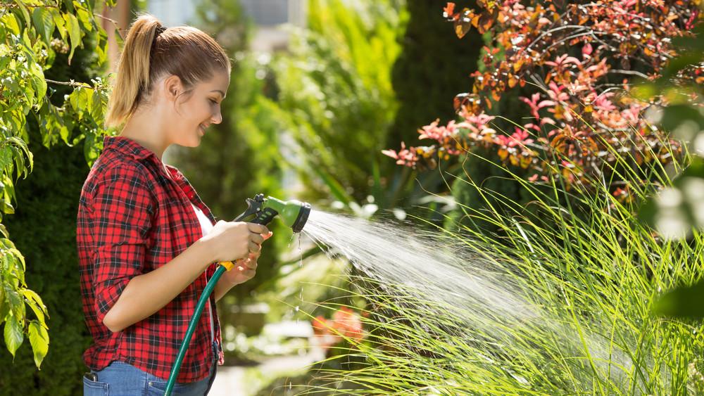 Egyszerű trükk: így öntözz nyáron, hogy ne pusztuljanak ki a növényeid