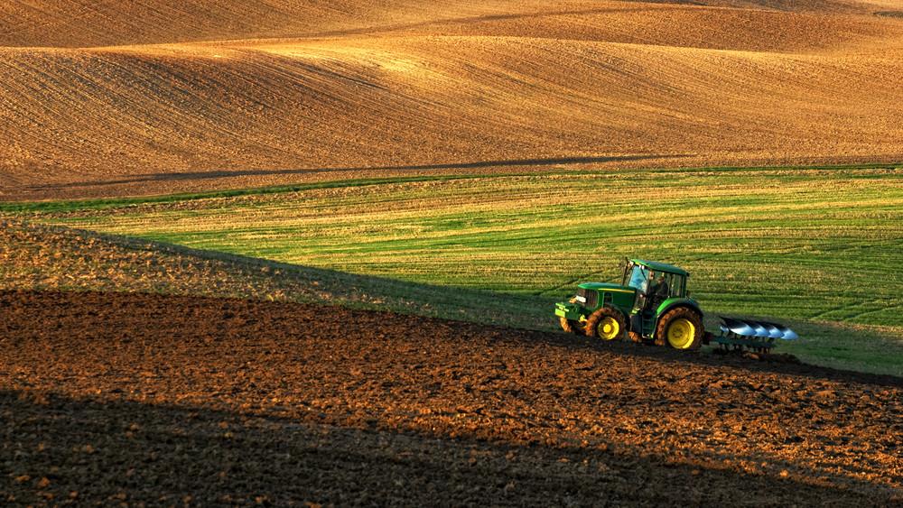 Nem csak az időjárás miatt kevesebb a termés: alig vetettek a gazdák