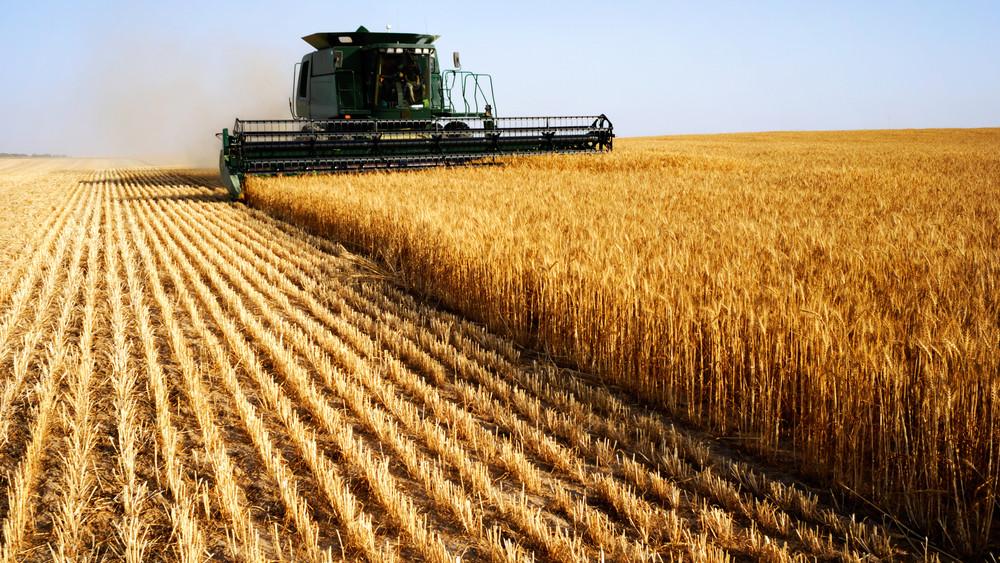 Új lendület az agráriumban: tanácsadással segít a Takarék Csoport