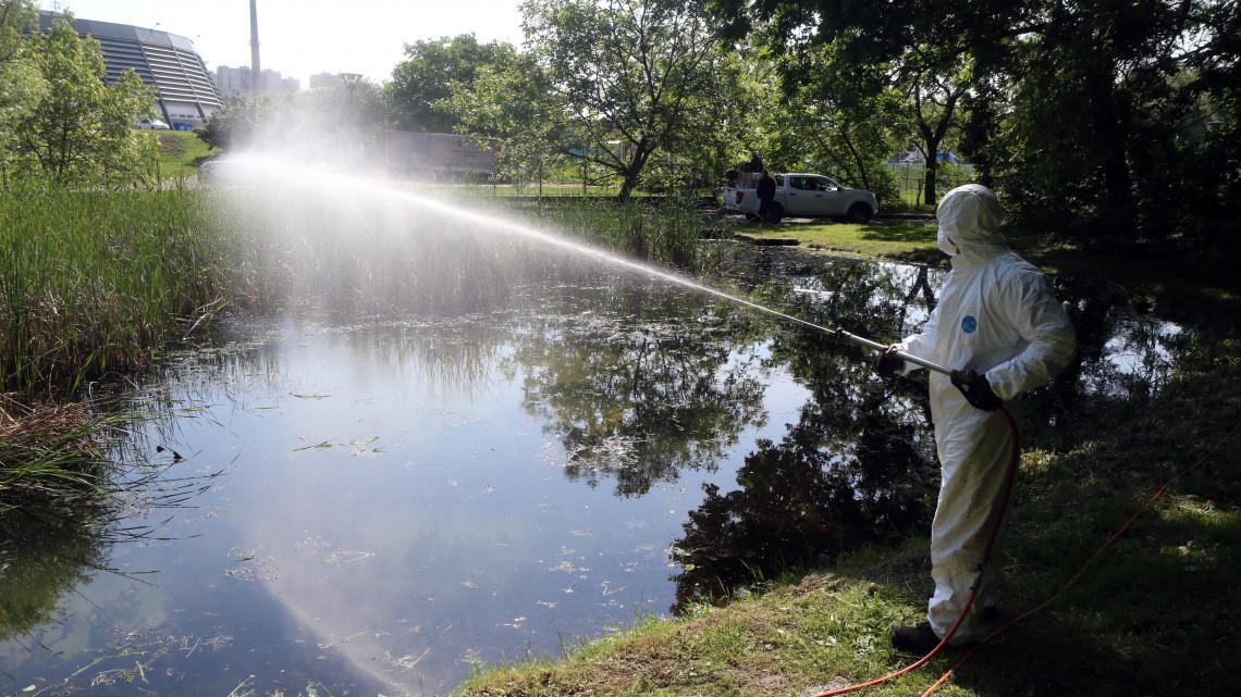 Csúcson a szúnyoginvázió: mutatjuk, hol lélegezhetnek fel a lakosok