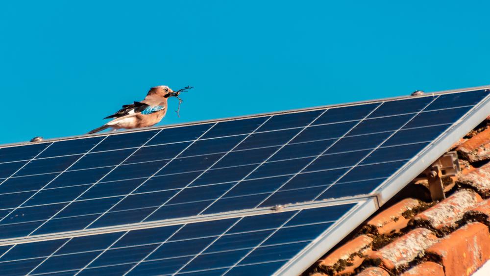 Épül a napelemes bölcsi: nem csak a gyerekek, az egész régió jól járhat