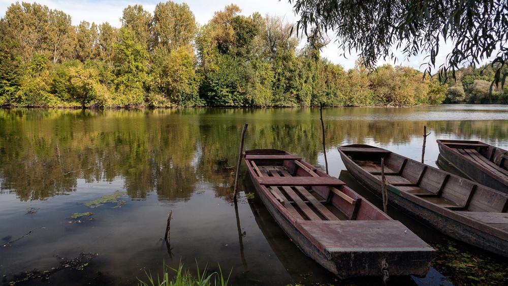 Páratlan kezdeményezés: így tisztítják meg a Tisza-tavat