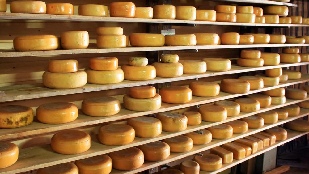 Ilyen menő sajtok készülnek Veszprémben: külföldön is imádják