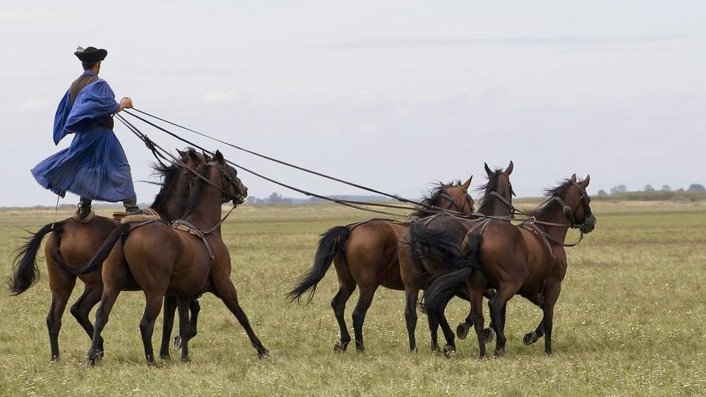 Sztárfellépők a pusztán: nagy durranás lesz a hortobágyi lovasnapok