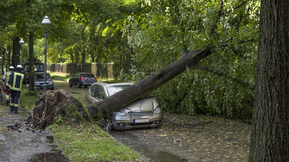 Romokban a fél ország: több százmilliós károkat okozott a vihar