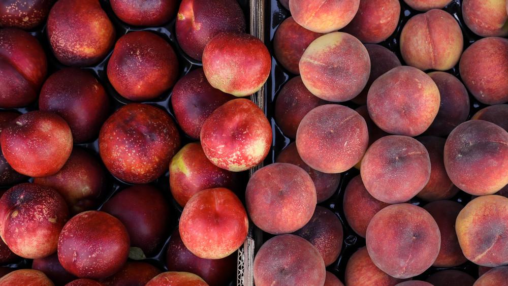 Kiderült a nagy barack-titok: ez a különbség a nektarin és az őszi között