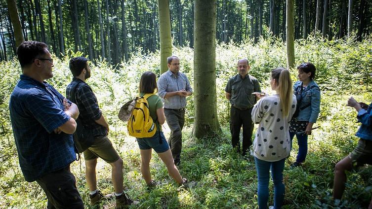 Természetjárás a környezetvédelemért: vándortábort szerveznek diákoknak
