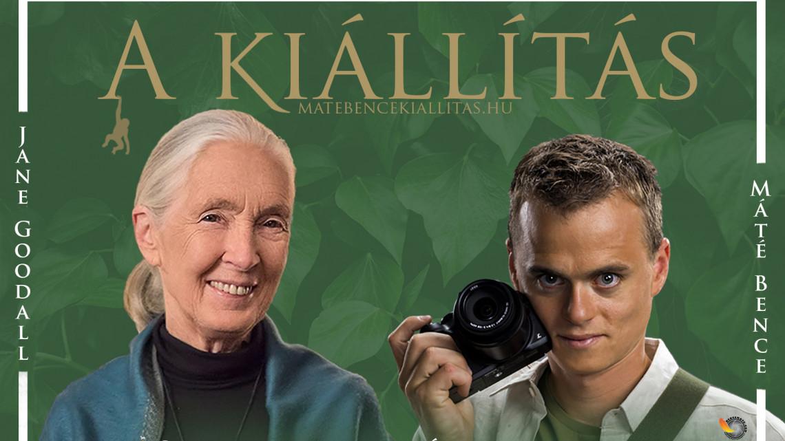 Természetrajongók figyelem: Szegedre érkezik Dr. Jane Goodall