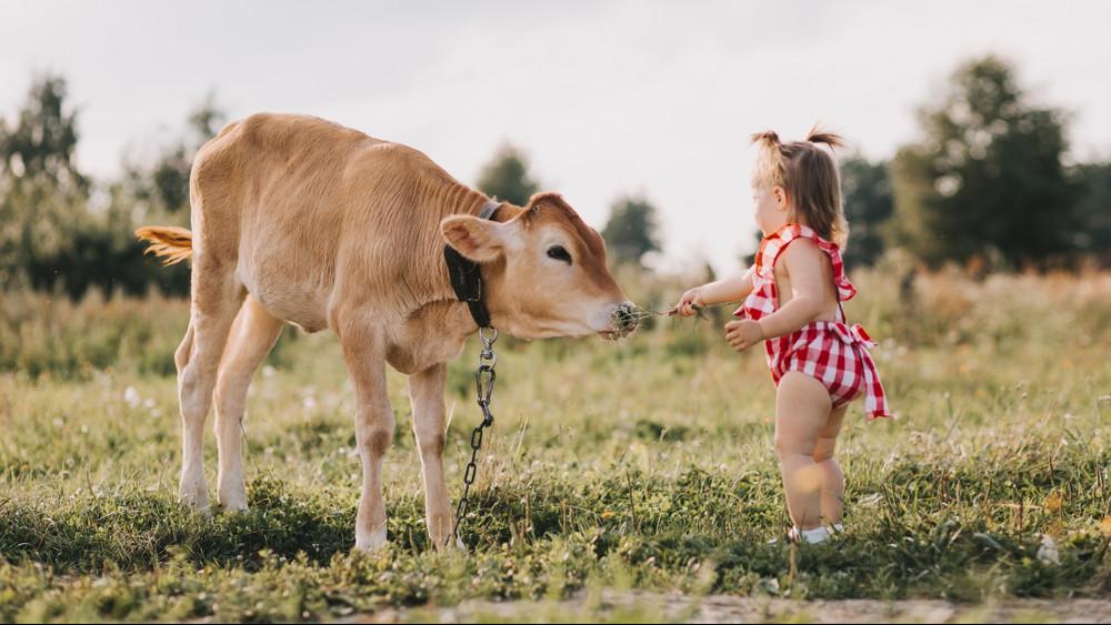 Lehull a lepel: a vidéki, vagy a városi gyerekek immunrendszere az erősebb?