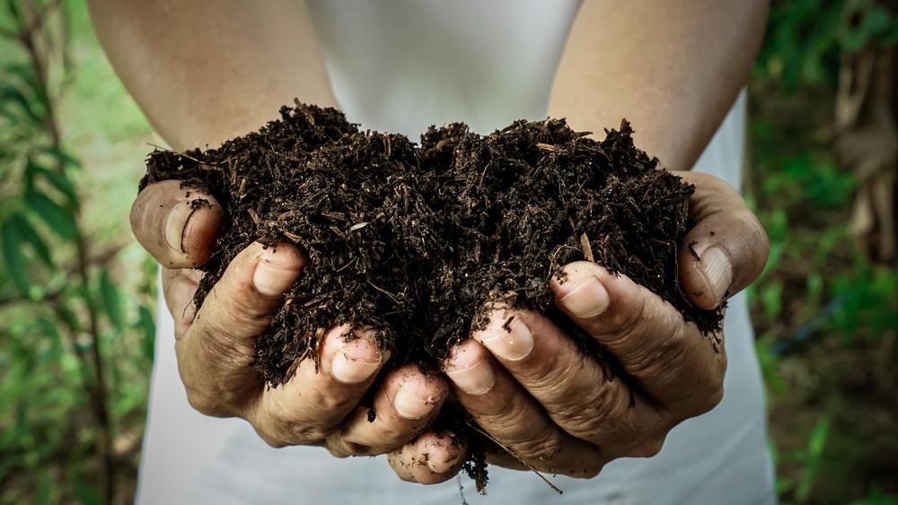 Eleged van a bűzölgő komposztládákból? Így szabadulj meg végleg a szagtól!