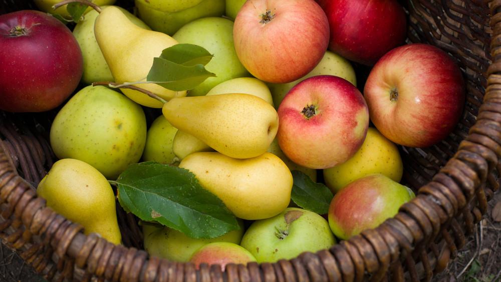 Fillérekért veheted meg a szezon gyümölcseit: mutatjuk, hol keresd