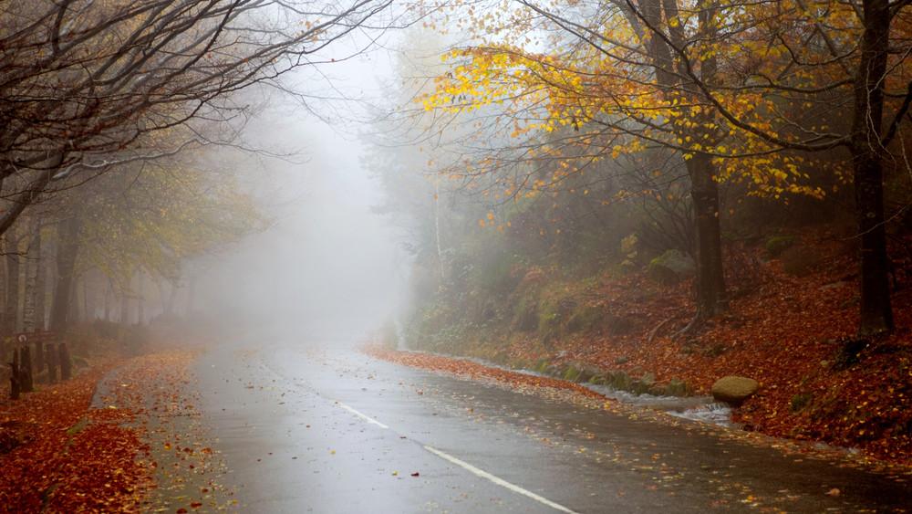 Durva változások jönnek az időjárásban: kiderült, mikor köszönt be az ősz