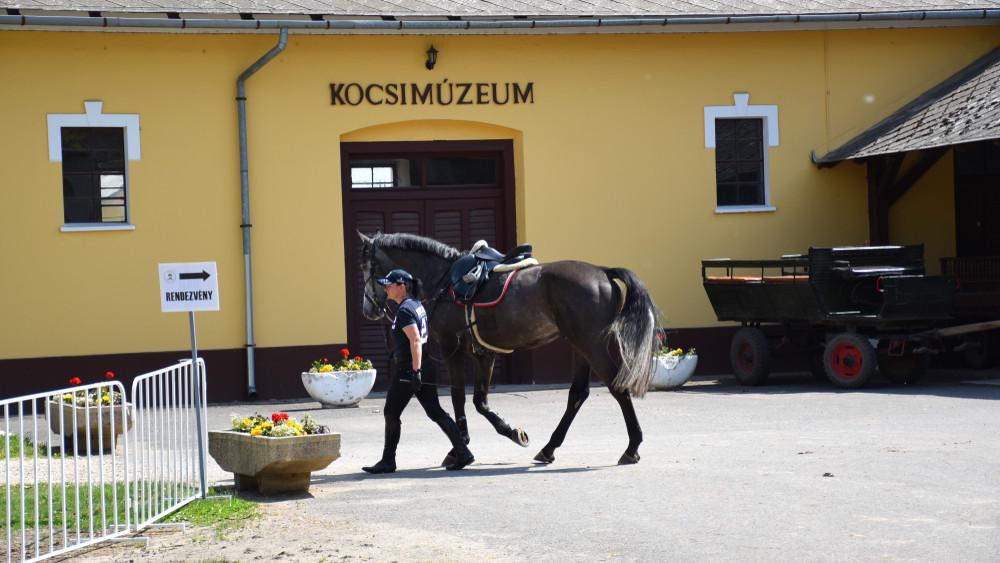 Örülhetnek a magyar lovassport szerelmesei: itthon rendezik a fogathajtó világbajnokságot