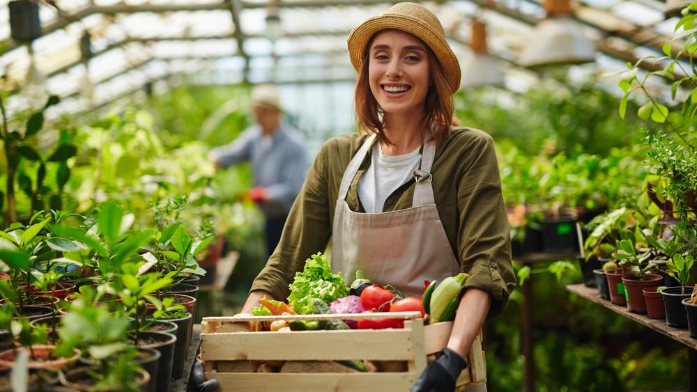 Így terelnék a fiatalokat az agráriumba: komoly támogatást kapnak