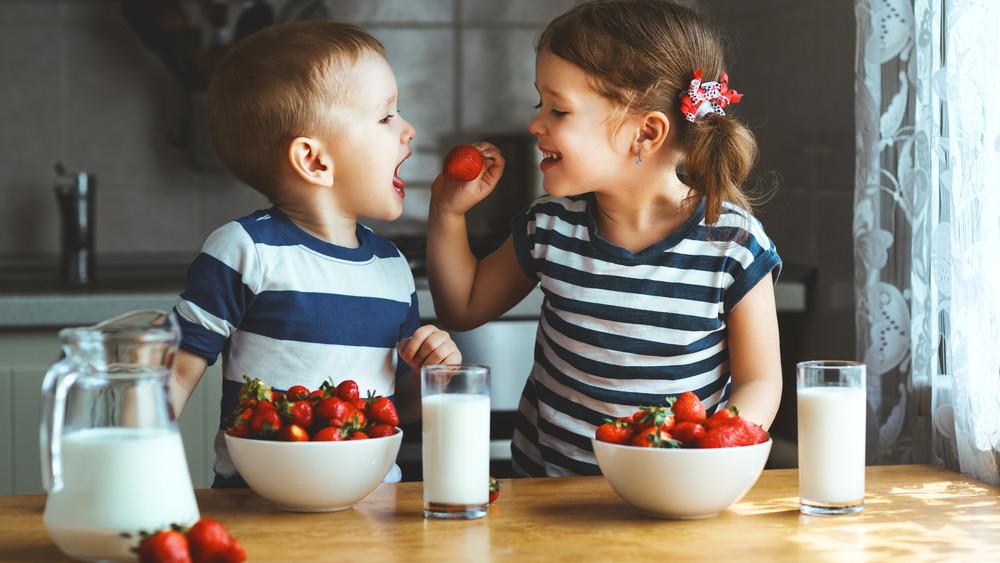 Tej- és gyümölcsprogram: étkezésreformáló kezdeményezés indul