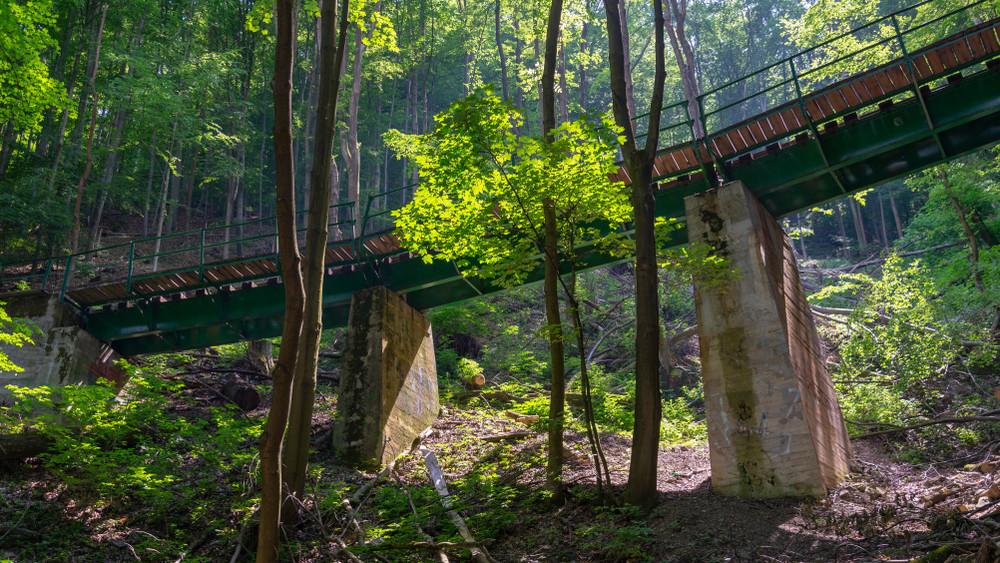 Rekord sokan látogatnak ebbe a magyar nemzeti parkba: ezt keresi mindenki