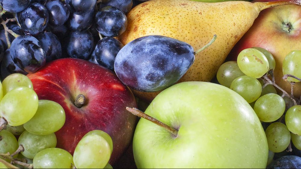 Túrbózd fel magad az őszre: mutatjuk a szezon vitaminbombáit!