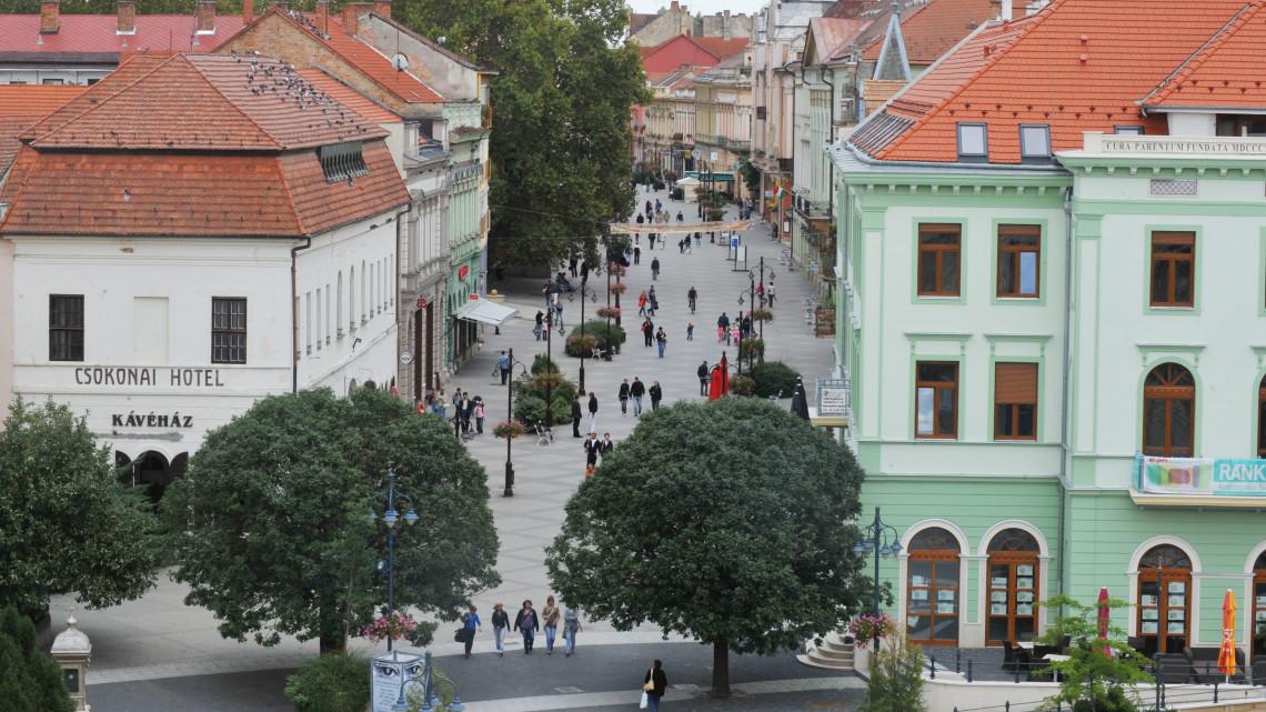 Kaposvár szuperzöldre vált: egyedülálló természetvédelmi kezdeményezés indul!