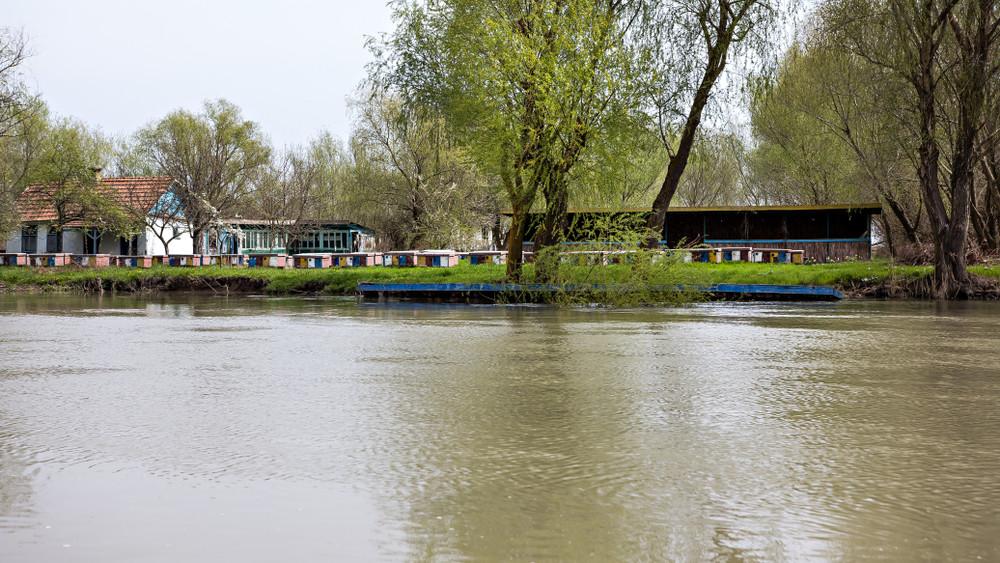 Ekkora halszörny ritkán bukkan fel a magyar vizekben: videón a nagy fogás