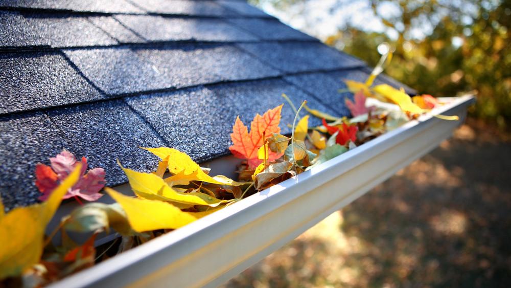 5 ház körüli teendő, amit ősszel mindenképp el kell végezni