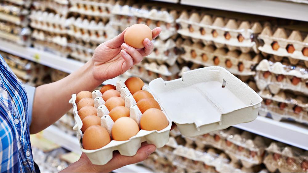 Veszélyben a magyar tojástermelés: a gazdák a multikat okolják
