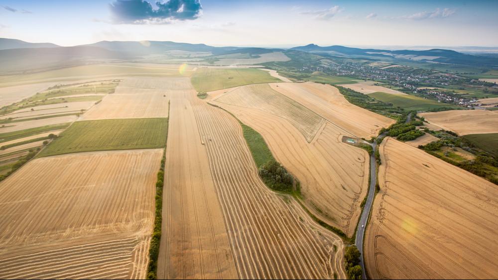 Ezek a magyar agrárium legnagyobb hiányosságai: fókuszban a növényvédelem és az öntözés