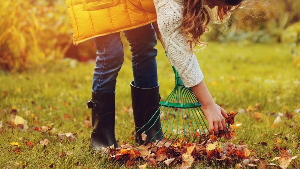 Ezt a 10 dolgot mindenképp csináld meg a kertben: itt az októberi feladatlista