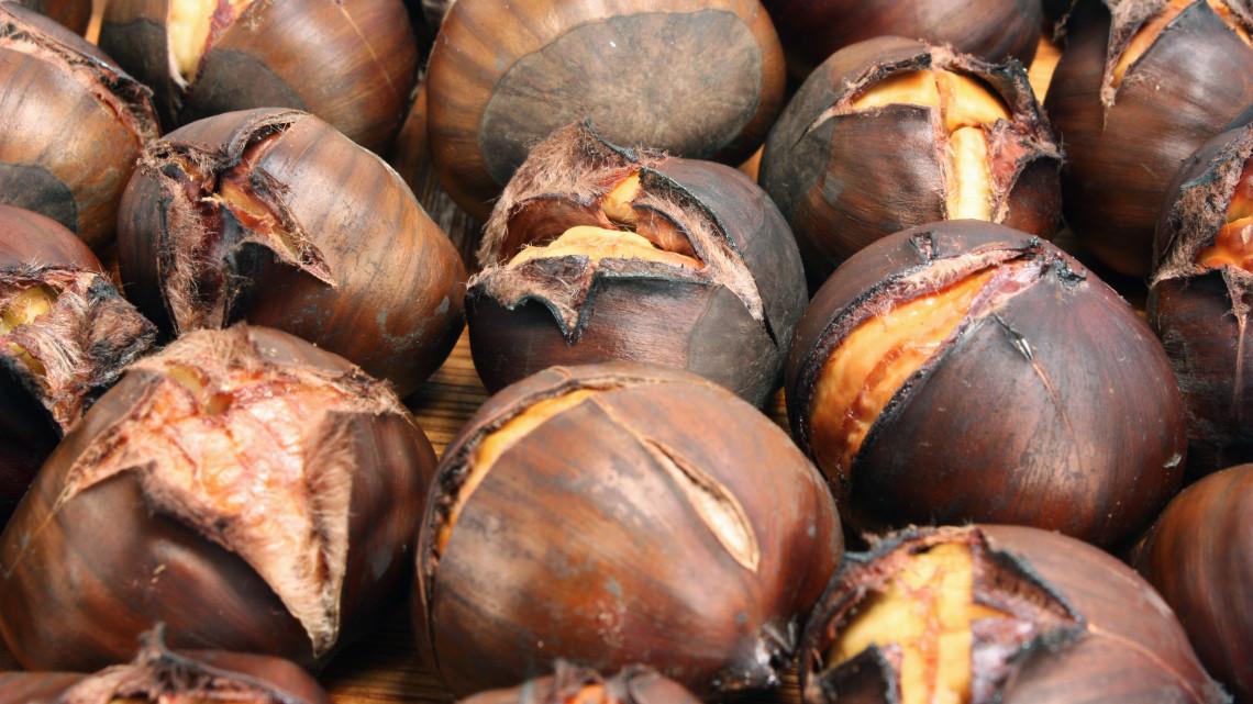 Egekben a gesztenye ára: hiába a bőséges termés, ha túl drágán kínálják