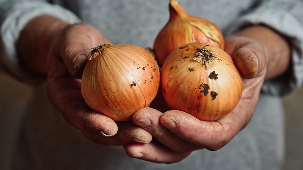 Természetes csodaszer: súlyos betegségtől véd meg a magyar ételek legfőbb alapanyaga