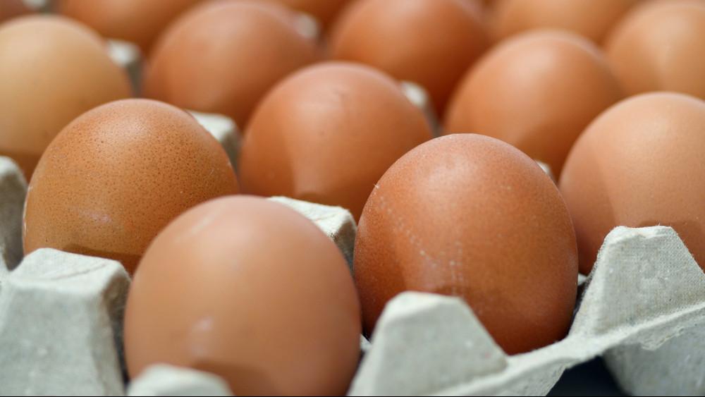Komoly változás a tojáspiacon: akár másfélszeresére is drágulhat a tojás