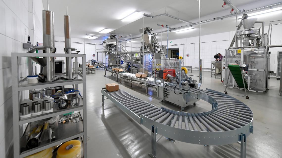 Fejlődni fog az élelmiszeripar hazánkban: 100 milliárdot fordítanak rá!
