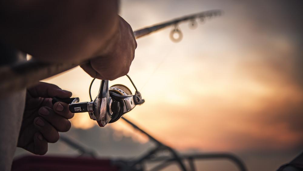 Gigahalat fogtak ki Baranyában: fotókon a több mint egymázsás állat