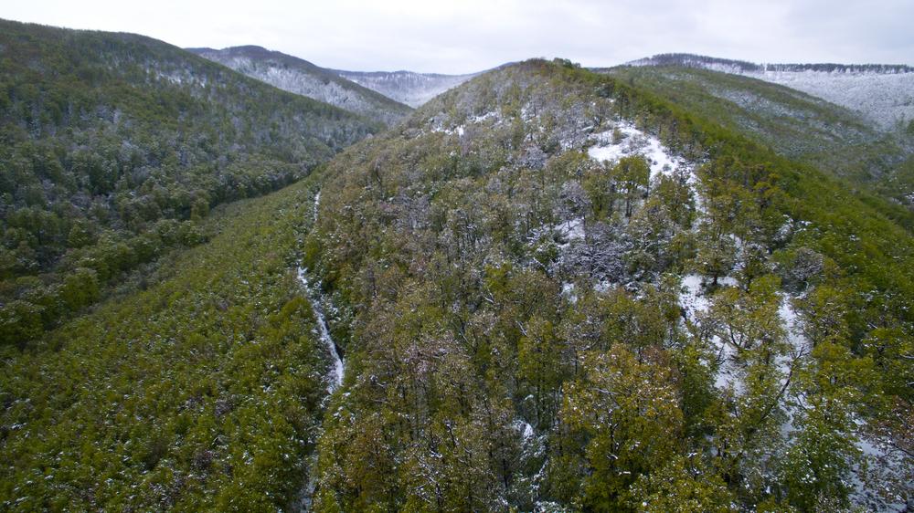 Erre senki sem számított: havazik a Börzsönyben + képek