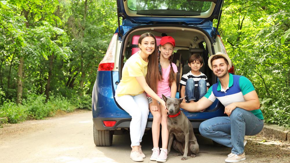 Hasít az autóvásárlási kedvezmény: közel tízezer család vette már igénybe