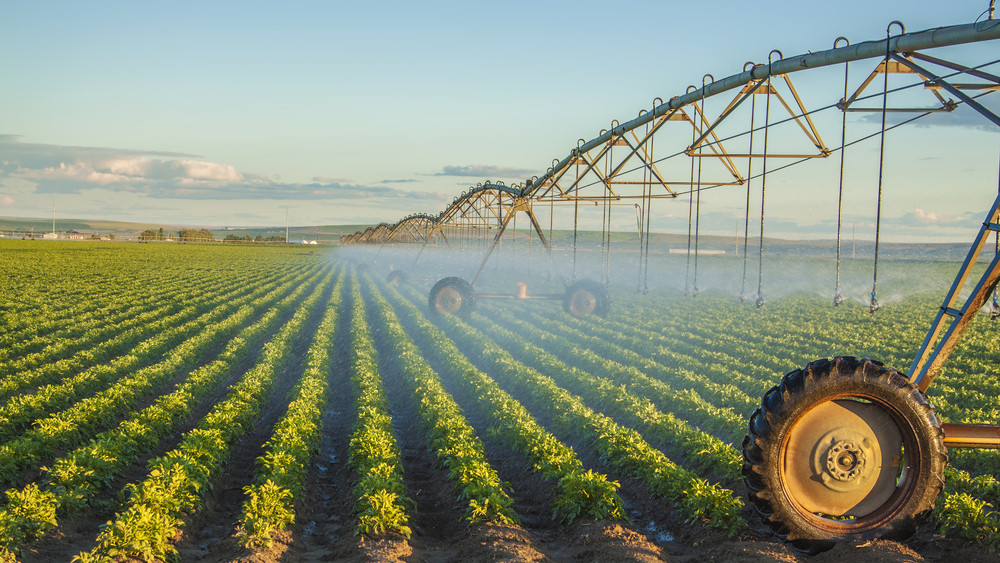 Hatalmas segítség: újabb jogszabály támogatná az öntözéses gazdálkodást