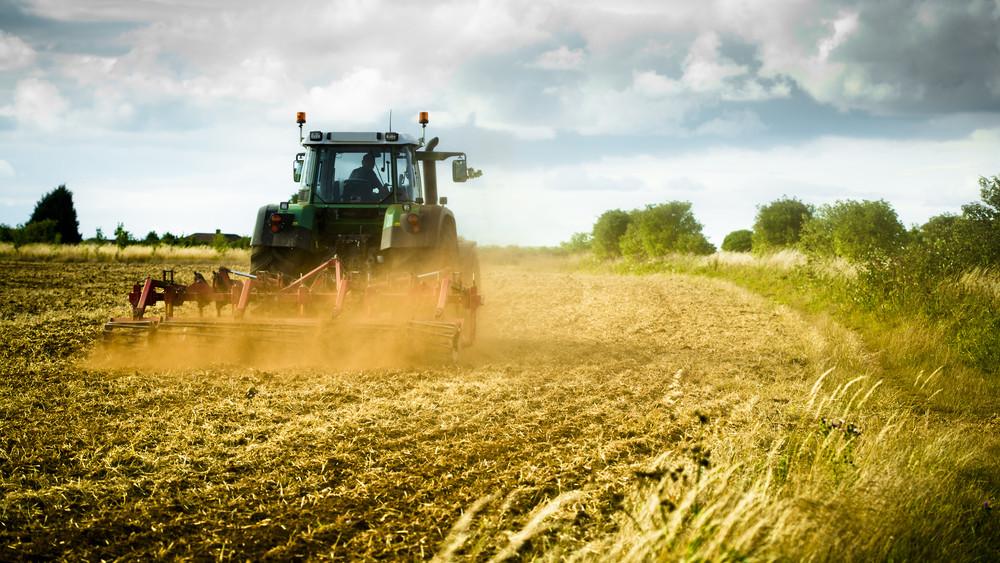Nem egyszerű a gazdák helyzete: nehezíti a betakarítást a rengeteg eső