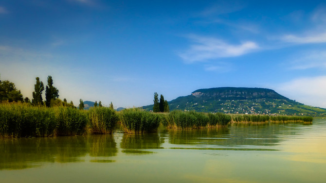 Veszélyes beruházás: súlyos károkat okozhat a Balaton ökológiájában