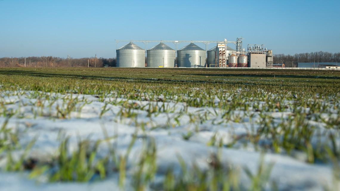 Örülnek a gazdák: idén kevesebb jégkár keletkezett