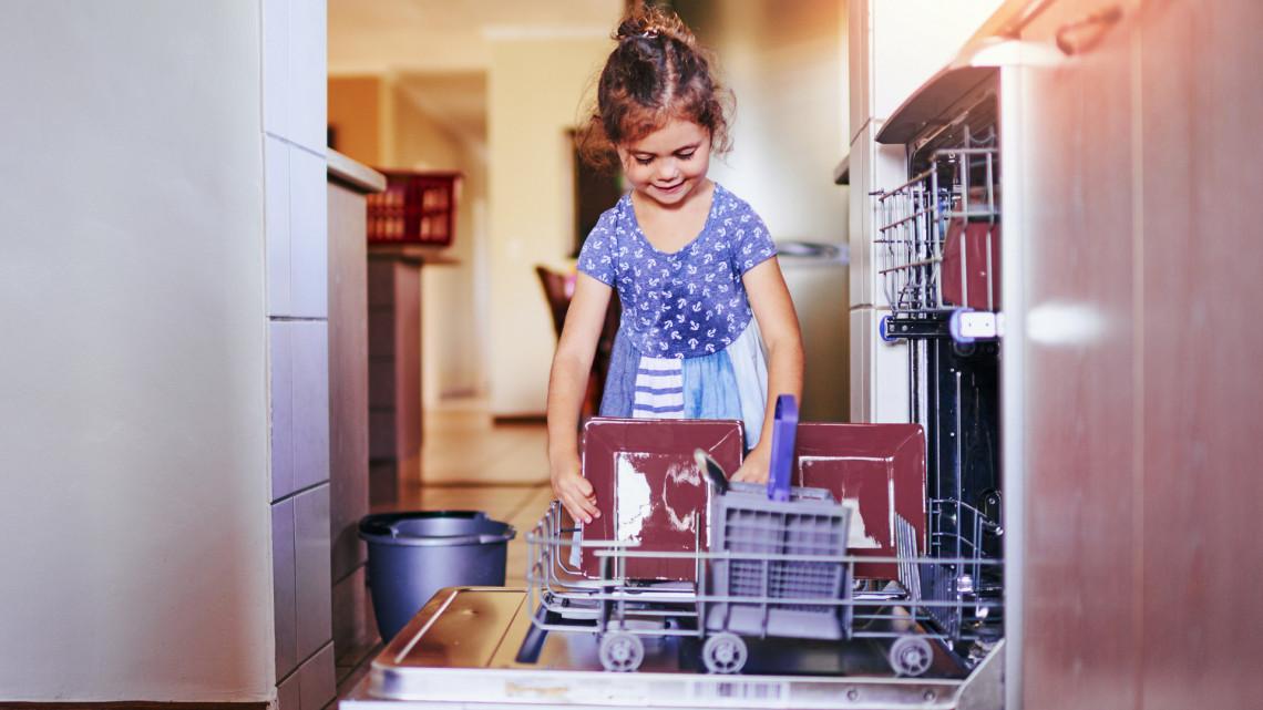 Egyre többen használják erre is a mosogatógépet: Te bevállalnád?