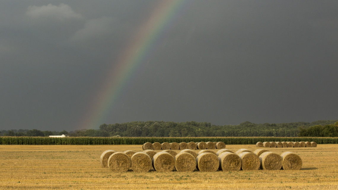 Újabb pénzesőt kap a magyar vidék: 12 milliárd forintot osztanak szét