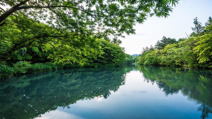 Varázslatos természetfotók: látványos felvételeken a Duna és a Tisza találkozása