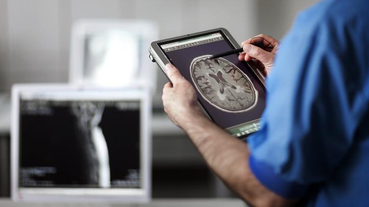 Sikersztori: újabb sejteket fedeztek fel magyar kutatók