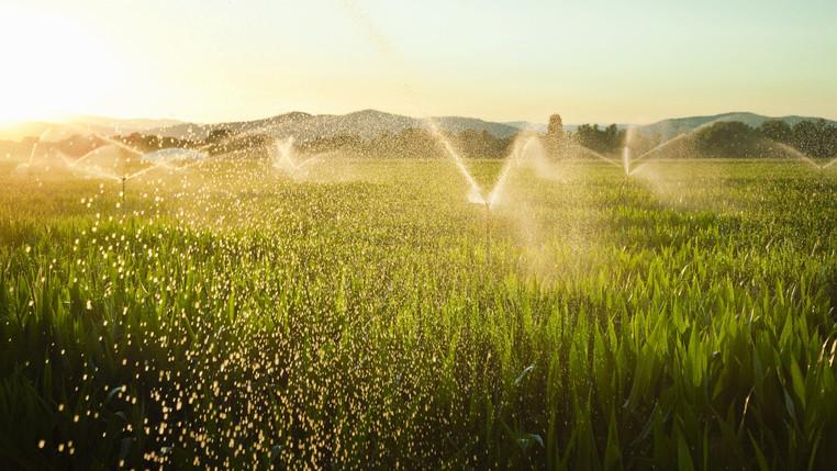 Átalakulhat az agrárium: nagy változások zajlanak az ágazatban