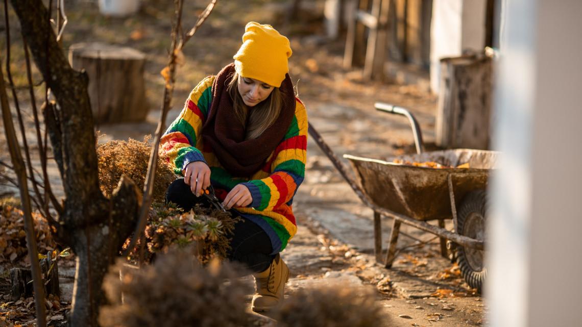 Ezek a legfontosabb kerti munkák decemberben: itt az év végi feladatlista