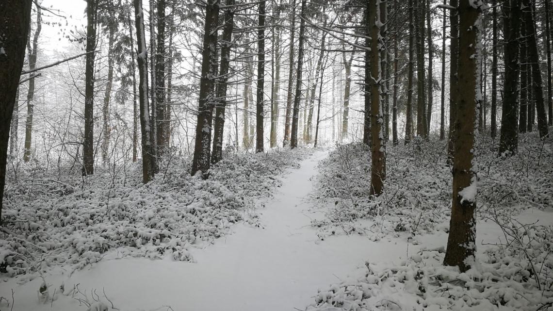 Kiadták a figyelmeztetést: viharos szél okozhat hófúvást, mutatjuk mely területeken