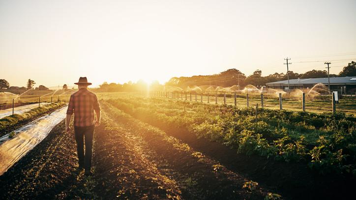 Jó hír a gazdáknak: ismét lehet pályázni az Év Tanyája díjra