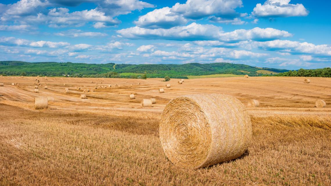Bejelentették: nagyszabású mezőgazdasági reform jön 2020-ban
