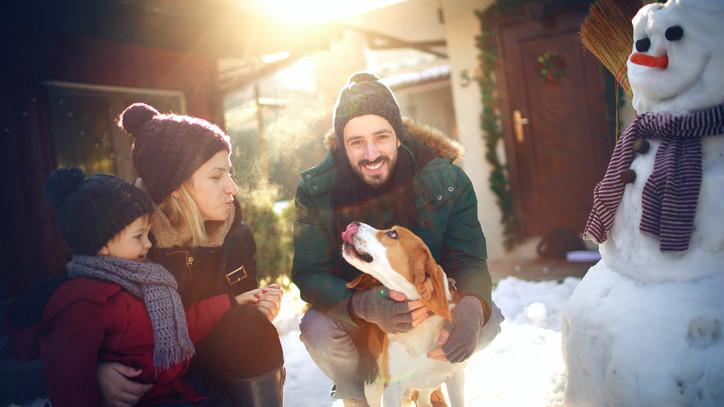 Ezt a legtöbb kutyatartó nem tudja: az eb élete múlhat rajta télen