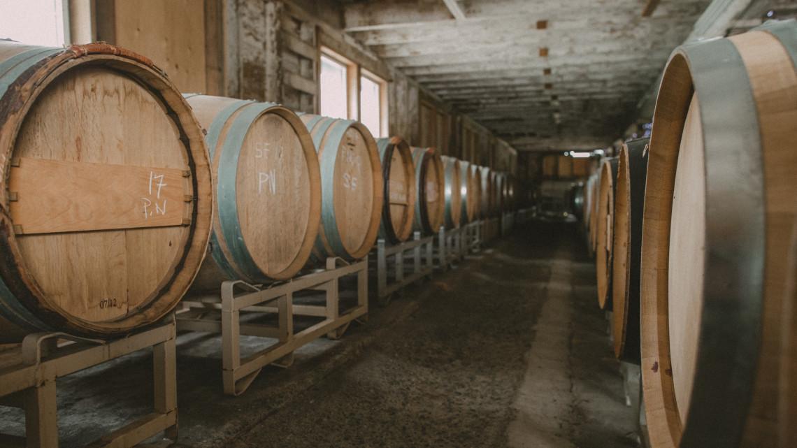 Bajban vannak a magyar borászatok: egyre kevesebbet isznak a magyarok